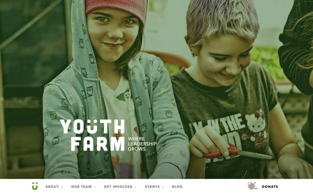 Youth Farm 2018